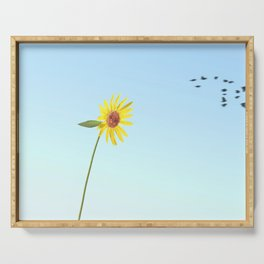 """Backlit Sunflower"" Serene Wildflower Art by Murray Bolesta Serving Tray"