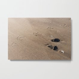 Who Goes There? Metal Print