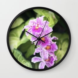 Longwood Gardens Orchid Extravaganza 61 Wall Clock