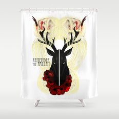 Remember the fallen Shower Curtain