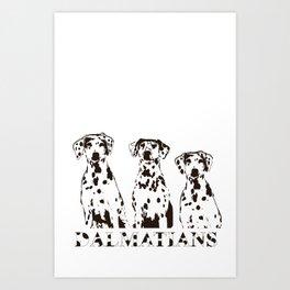 Three Dalmatians Dogs Art Print