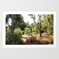 oasis Art Prints featuring Oasis by Chris' Landscape Images & Designs