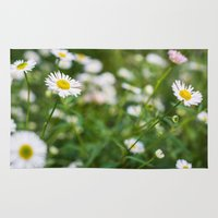daisies Area & Throw Rugs featuring Daisies by Michelle McConnell