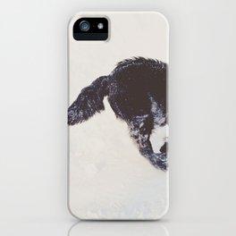duncan iPhone Case