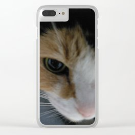 Calico cat Clear iPhone Case