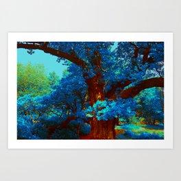 birnam wood in technicolor Art Print