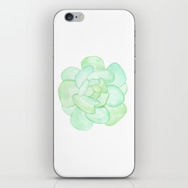 Crassula - Green Succulent iPhone Skin