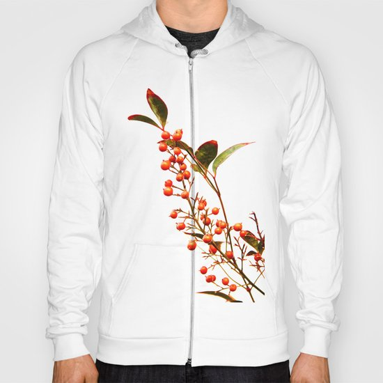 A Fruitful Life Hoody