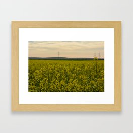 sun in the nature Framed Art Print