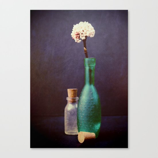 Glass Bottles with  a Winter Blossom Canvas Print