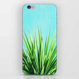Solar Yucca Palm iPhone Skin