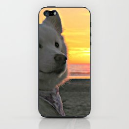 Sunset Sammy iPhone Skin