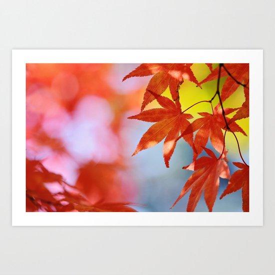 Autumn blush Art Print