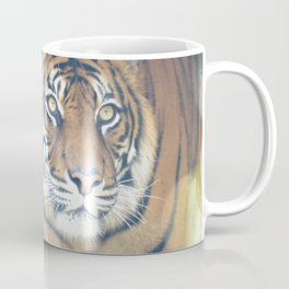 Tiger 003 Coffee Mug