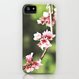 Whisp of Spring iPhone Case