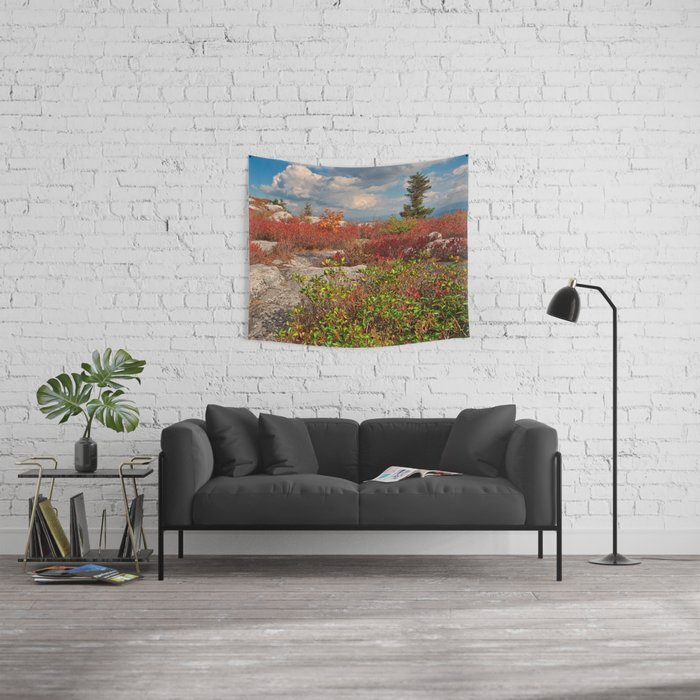 Dolly Sods Ruby Rockscape Wall Tapestry