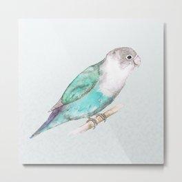 Pale blue lovebird Metal Print