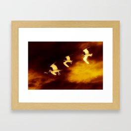 Birds glow Framed Art Print