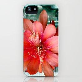 Flamingo Floaty iPhone Case