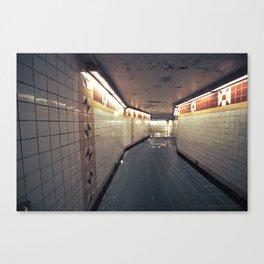 029//365 [v2] Canvas Print