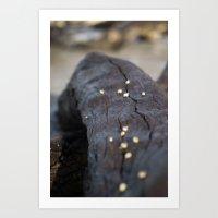 Snails On a Journey Art Print