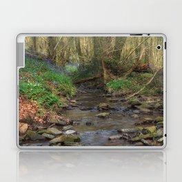 Plummers Brook Laptop & iPad Skin