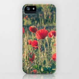 Field covered with red flowers illuminated by the sunrise sun. Flowers of delicate petals in the mea iPhone Case