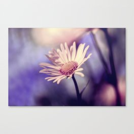 Yellow Daisy Flower Canvas Print