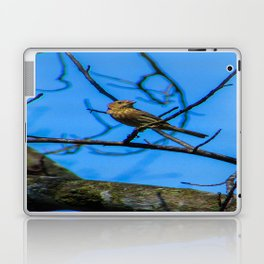 Birds in the Sky Laptop & iPad Skin