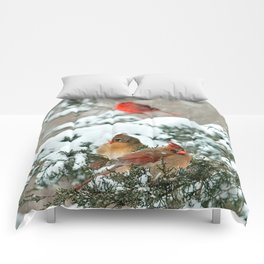 After the Snow Storm: Three Cardinals Comforters