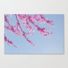 Blossoms - In Memory of Mackenzie Canvas Print