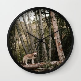 Husky in Forest Wall Clock