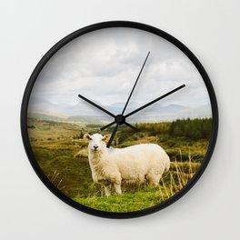 A sheep in the Irish hills Wall Clock