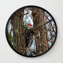 Male Pileated Woodecker Wall Clock