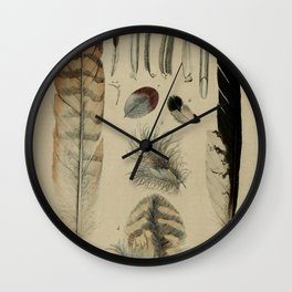 Naturalist Feathers Wall Clock