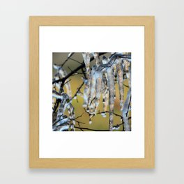 Icicles on a small tree Framed Art Print