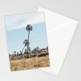El Palmar National Park Crooked Palm Trees   Entre Rios, Argentina   Travel Landscape Photography Stationery Cards
