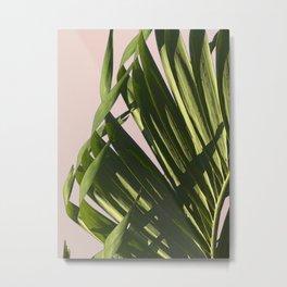 Palm leaf Metal Print