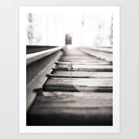 railroad flower  Art Print