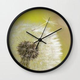 Dandelion wish Wall Clock