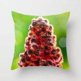 Staghorn Sumac. Photograph Throw Pillow