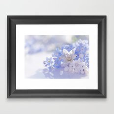 Queen and court- Springflowers in blue and white - Stilllife Framed Art Print