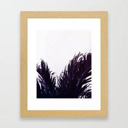 Palm fringe Framed Art Print