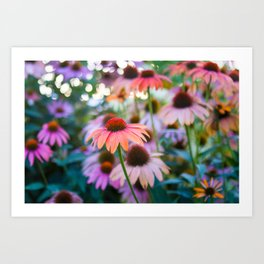 Growing Freely Art Print