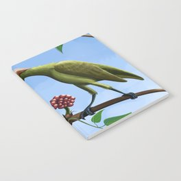 Whimsical  birds Notebook
