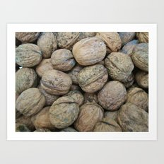 Autumn Walnuts Art Print