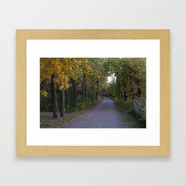 Illinois Autumn Trail Framed Art Print