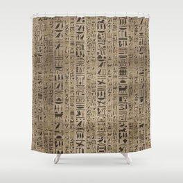 Egyptian hieroglyphs on wooden texture Shower Curtain