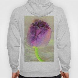 Purple Crush Hoody