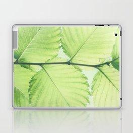 Turkish hazel leave – Baumhaselblätter Laptop & iPad Skin